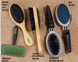 dog brushes