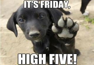 friday-high-five